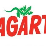 2002 - Logo Lagarto